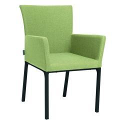 ARTUS • Armlehnstuhl / Sessel • Aluminiumgestell anthrazit • Outdoorstoff farngrün/seidengrau • STERN
